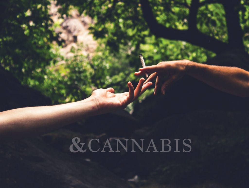 about and cannabis