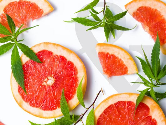 grapefruit cannabis strain with fruit