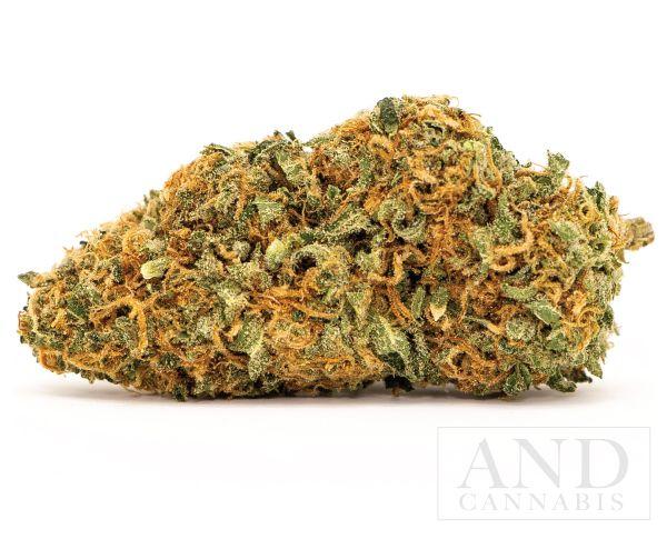 mango haze cannabis flower bud